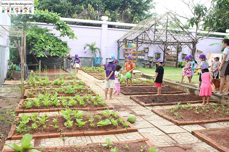 little foot kindergarten 1 ngày nông dân
